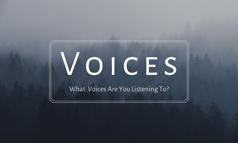 Voices Series